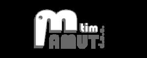 Oblikovanje in izdelava spletne strani Mamut tim