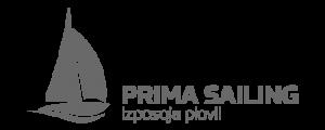 Oblikovnje Google Ad reklamnih pasic za podjetje Prima Sailing.